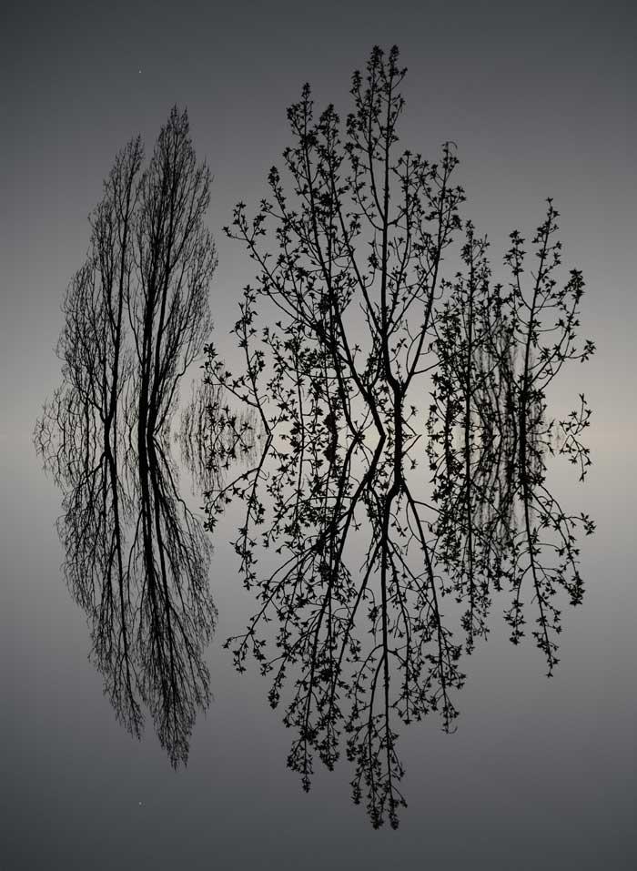 Artless loop, Marlene Kern, Digital Art